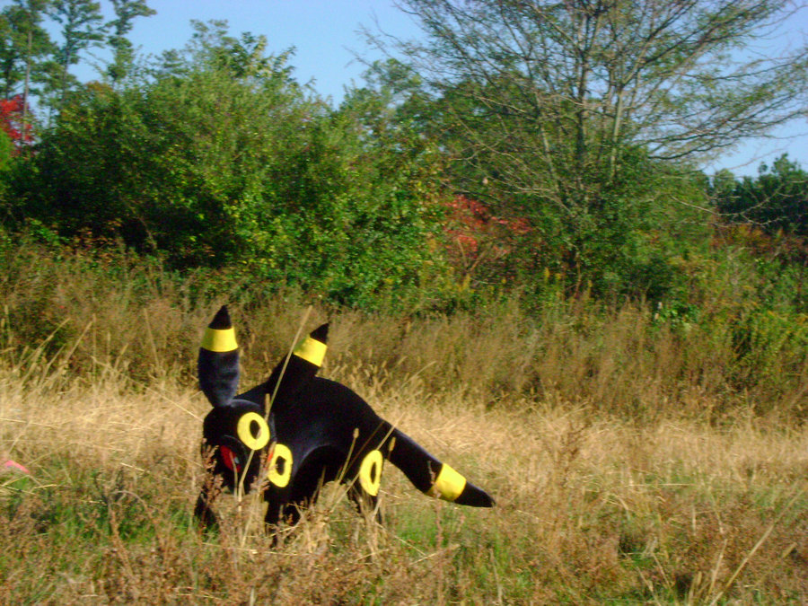 umbreon-2